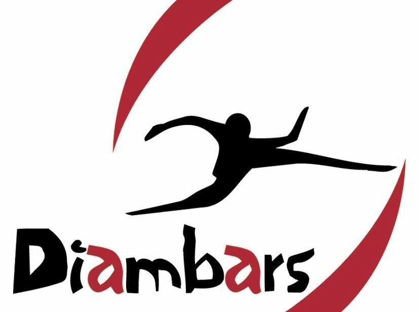 Logo du partenaire Diambars